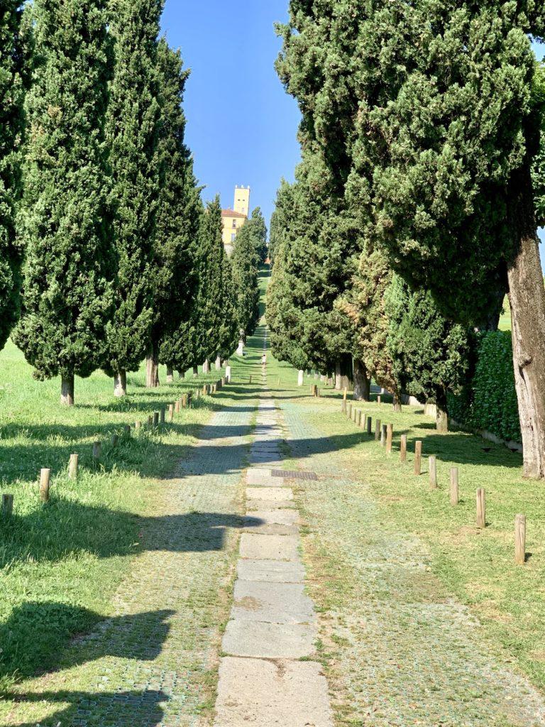 Alta Brianza - Viale dei Cipressi